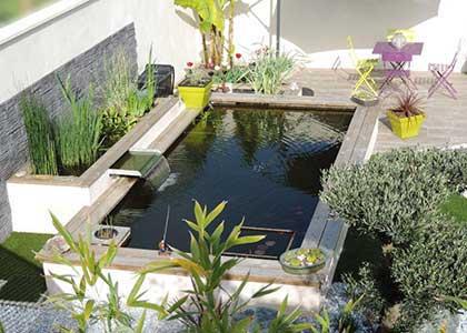 quelques exemples de bassins d 39 agr ment pisciculture carpio. Black Bedroom Furniture Sets. Home Design Ideas